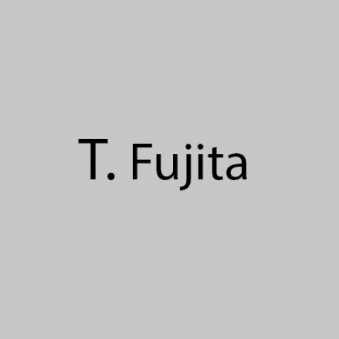 Tsughuhara Fujita